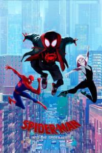 Poster Spider-Man: Un nuevo universo