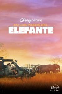 Poster Tras los Pasos del Elefante