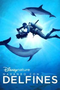 Poster Nadando con Delfines