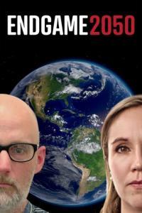 Poster Endgame 2050