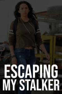 Poster Obsesión: Huyendo de mi ex