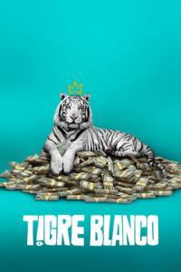 Poster Tigre Blanco