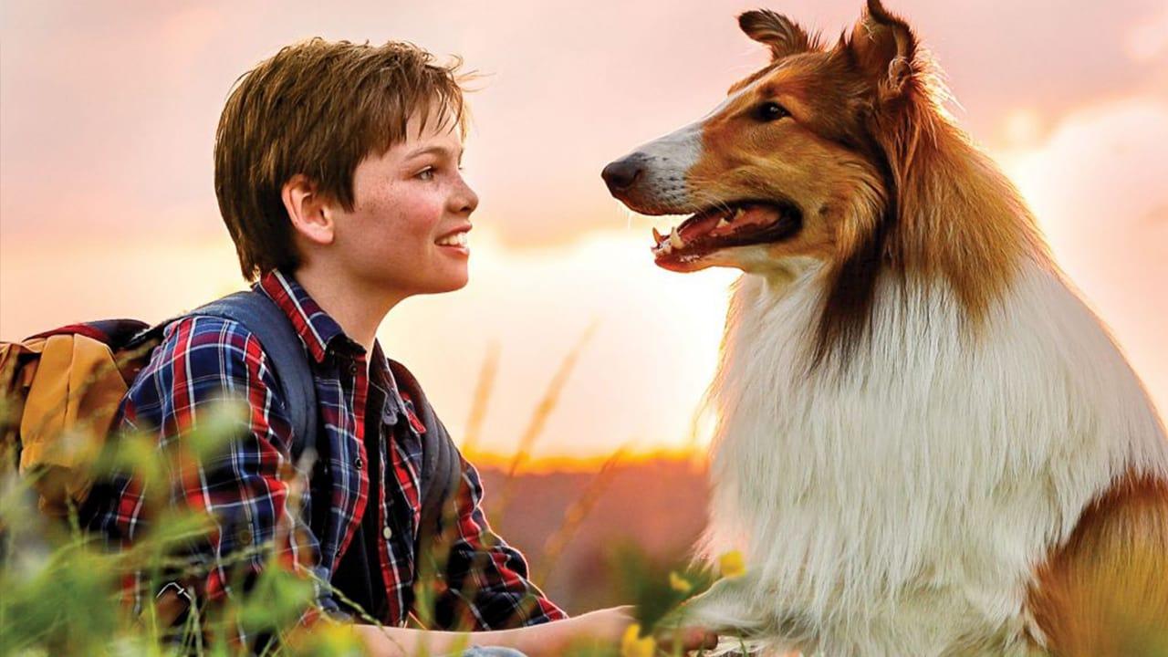 Película Lassie Vuelve a Casa en GNULA