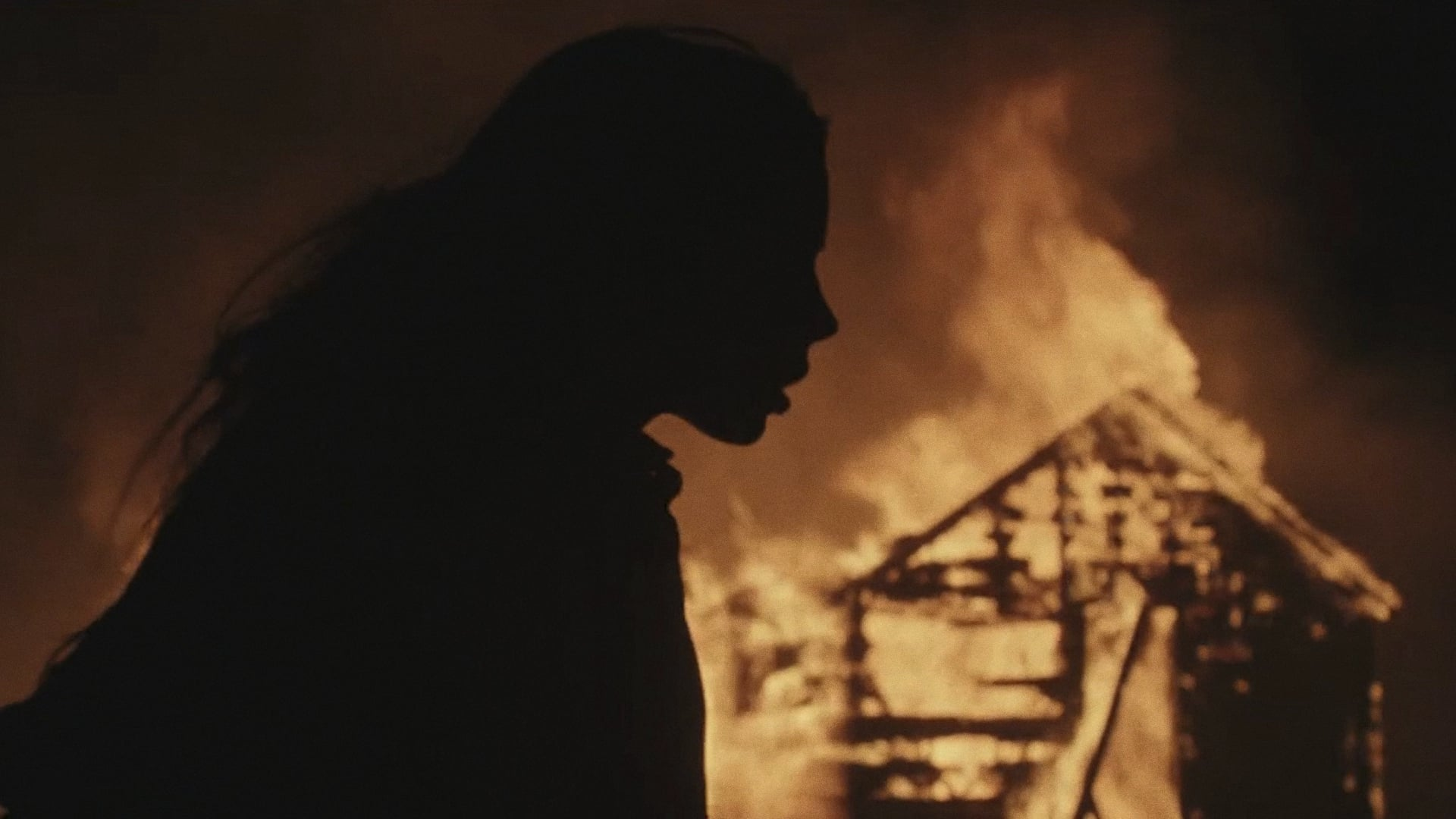 Película Before The Fire en GNULA