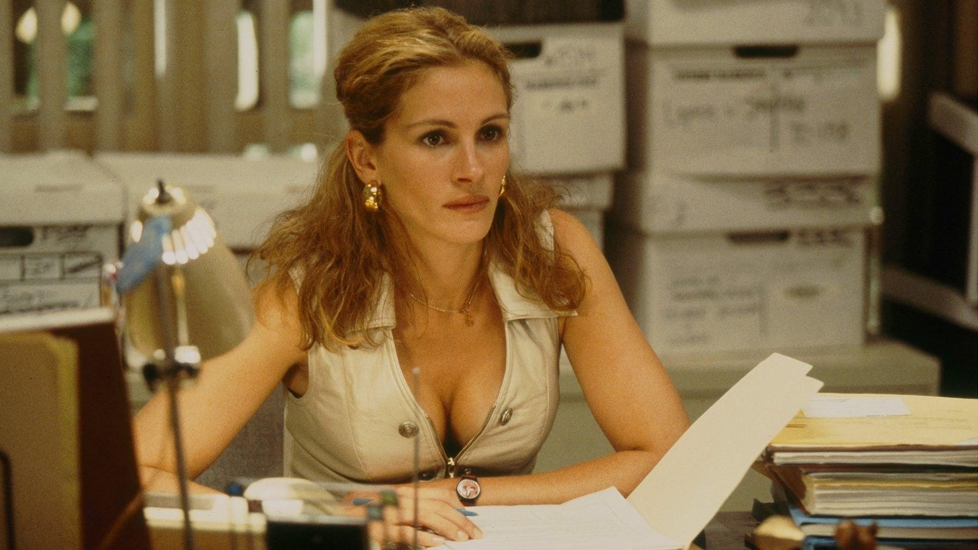 Película Erin Brockovich, Una Mujer Audaz en GNULA
