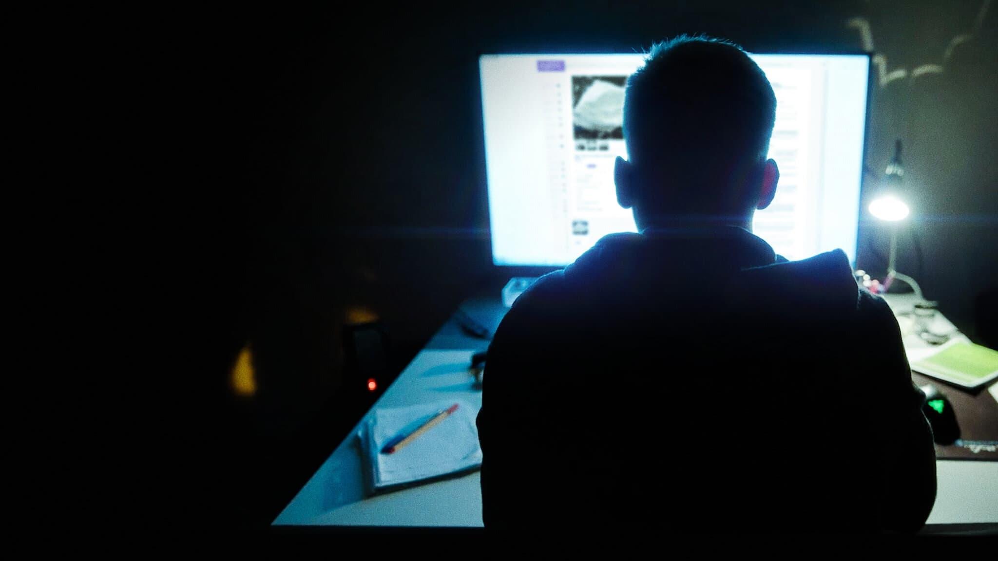 Película Shiny_Flakes - El cibernarco adolescente en GNULA